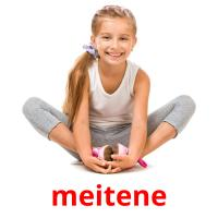 meitene picture flashcards