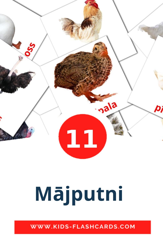 11 Mājputni  Picture Cards for Kindergarden in latvian