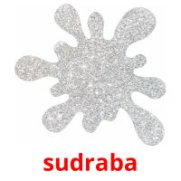 sudraba picture flashcards