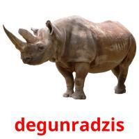 degunradzis picture flashcards