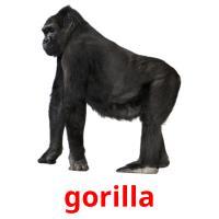 gorilla picture flashcards