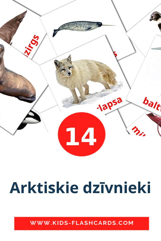 14 Arktiskie dzīvnieki Picture Cards for Kindergarden in latvian