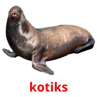 kotiks picture flashcards