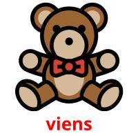 viens picture flashcards
