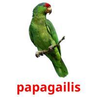 papagailis picture flashcards