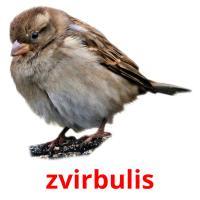 zvirbulis picture flashcards