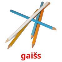 gaišs picture flashcards