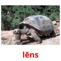 lēns picture flashcards