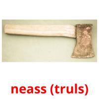 neass (truls) picture flashcards