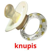 knupis picture flashcards