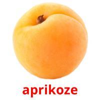 aprikoze picture flashcards