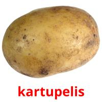 kartupelis picture flashcards