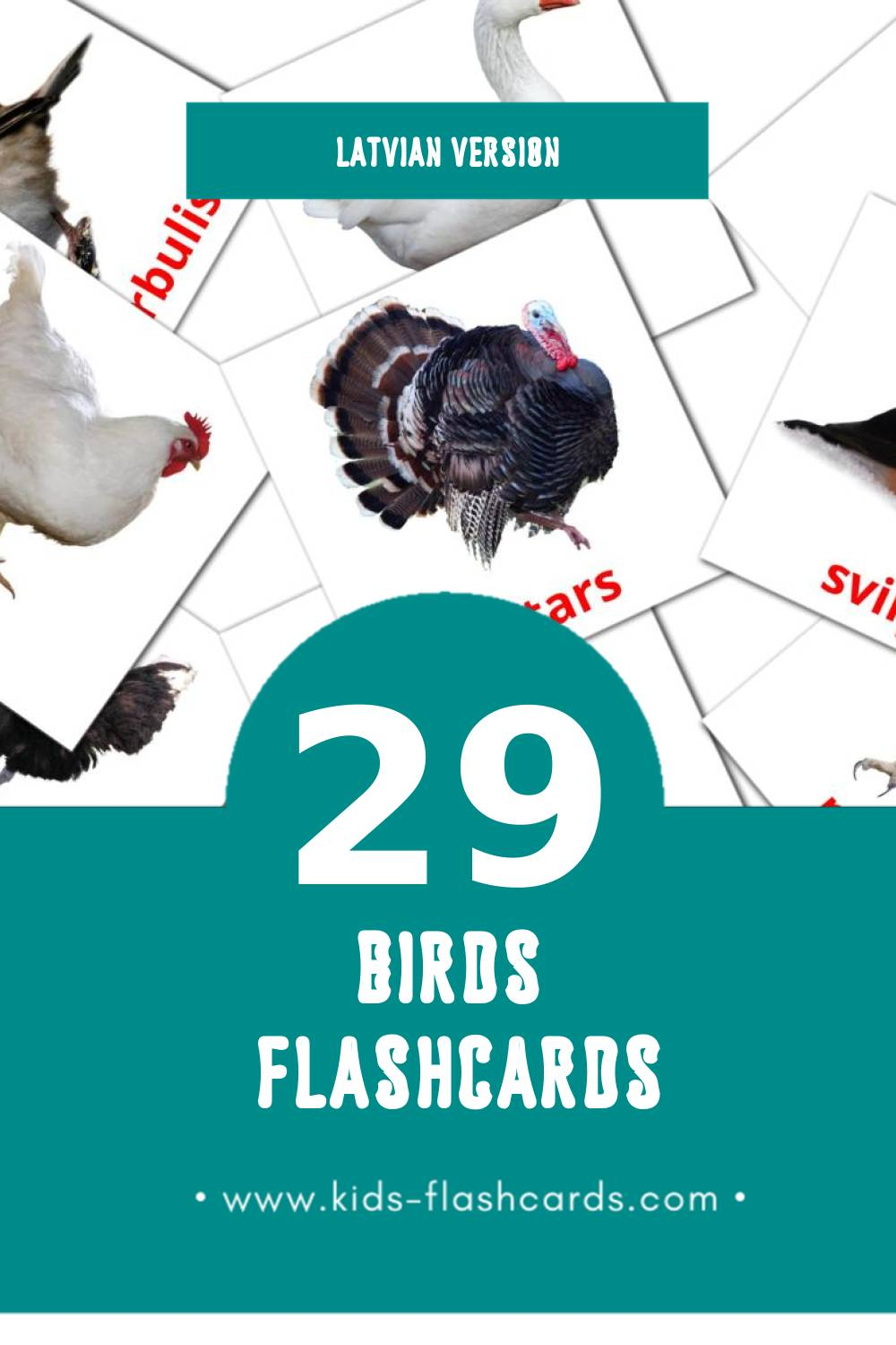 Visual Putni Flashcards for Toddlers (28 cards in Latvian)