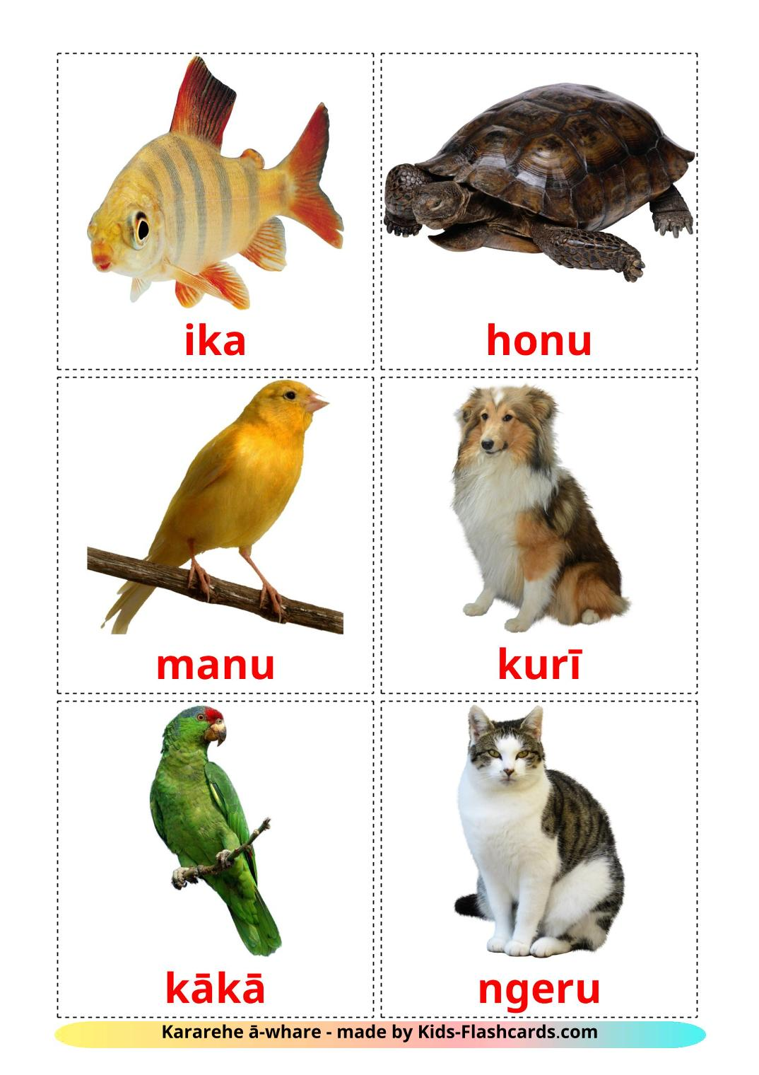 Domestic animals - 10 Free Printable maori Flashcards
