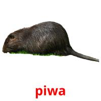 piwa picture flashcards