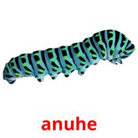 anuhe picture flashcards