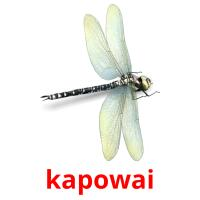 kapowai picture flashcards