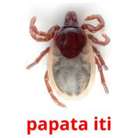 papata iti picture flashcards