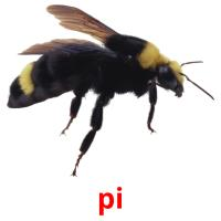 pi picture flashcards