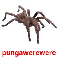 pungawerewere picture flashcards