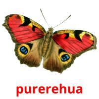 purerehua picture flashcards