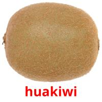 huakiwi picture flashcards