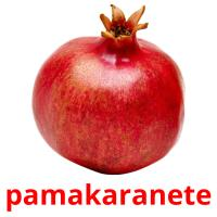 pamakaranete picture flashcards