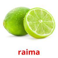 raima picture flashcards