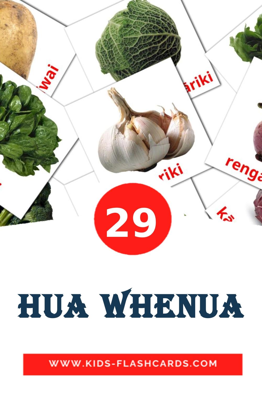 29 Hua Whenua Picture Cards for Kindergarden in maori