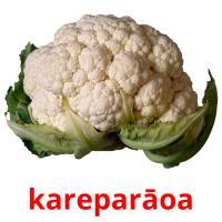 kareparāoa picture flashcards