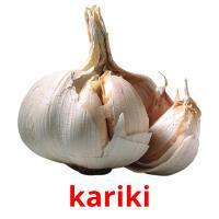 kariki picture flashcards