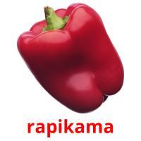 rapikama picture flashcards