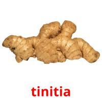 tinitia picture flashcards