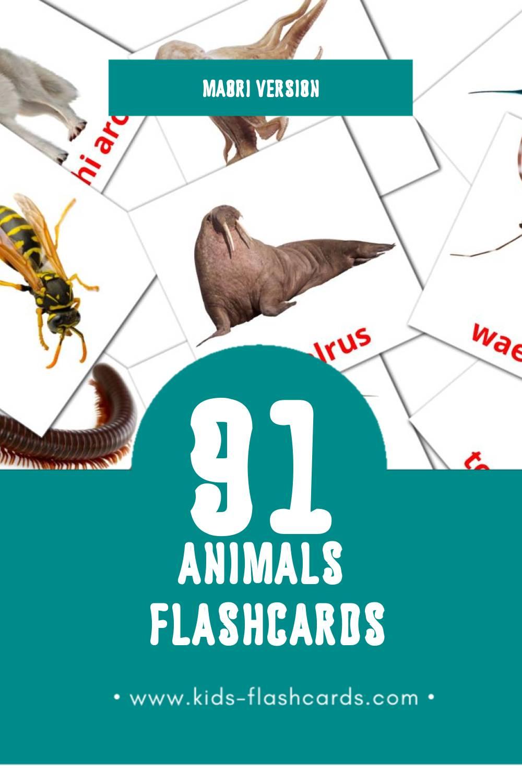 Visual Tamariki o Tane Mahuta Flashcards for Toddlers (48 cards in Maori)