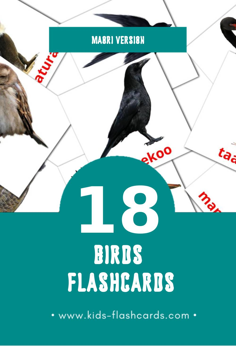 Visual Manu Flashcards for Toddlers (18 cards in Maori)