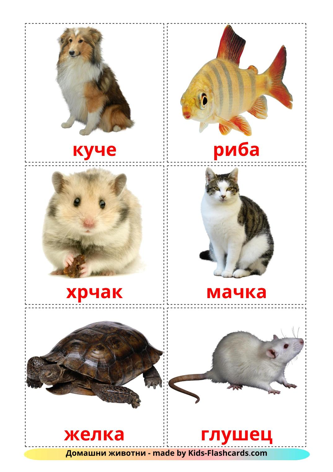 Domestic animals picture cards for Kindergarden in macedonian