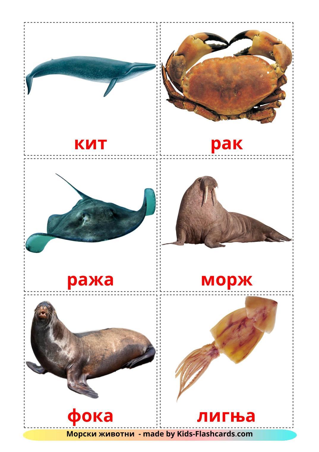 Sea animals - 29 Free Printable macedonian Flashcards