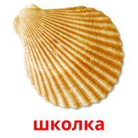 школка picture flashcards