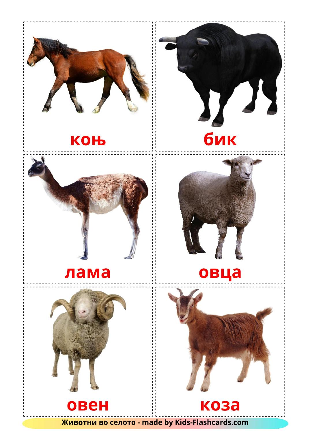 Farm animals - 15 Free Printable macedonian Flashcards