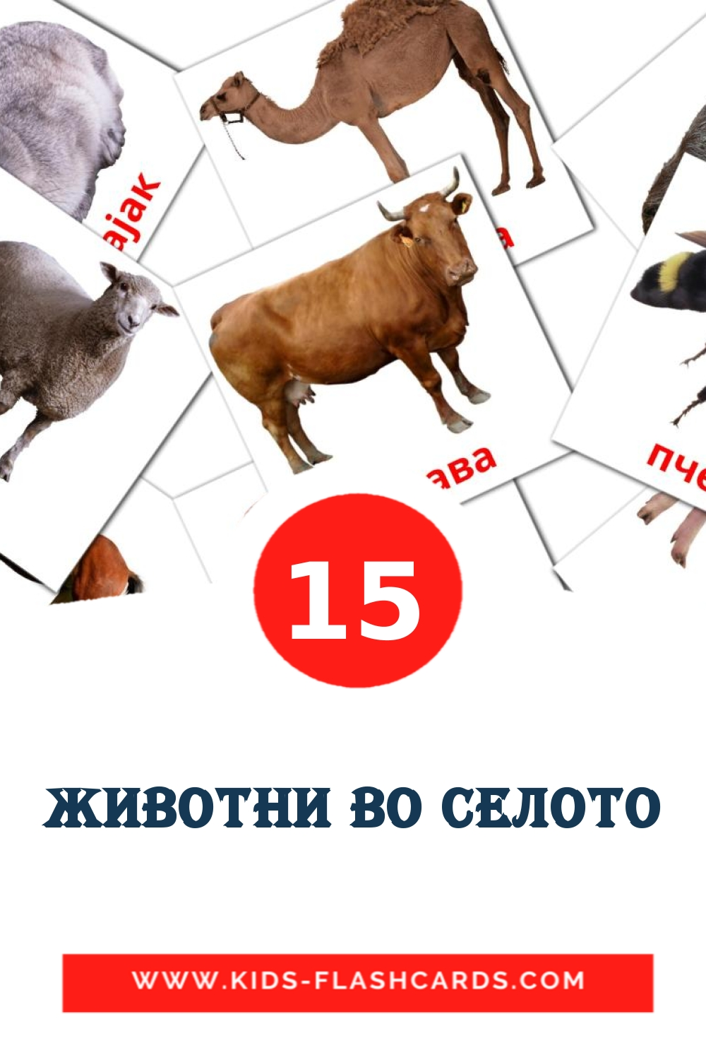 15 Животни во селото Picture Cards for Kindergarden in macedonian