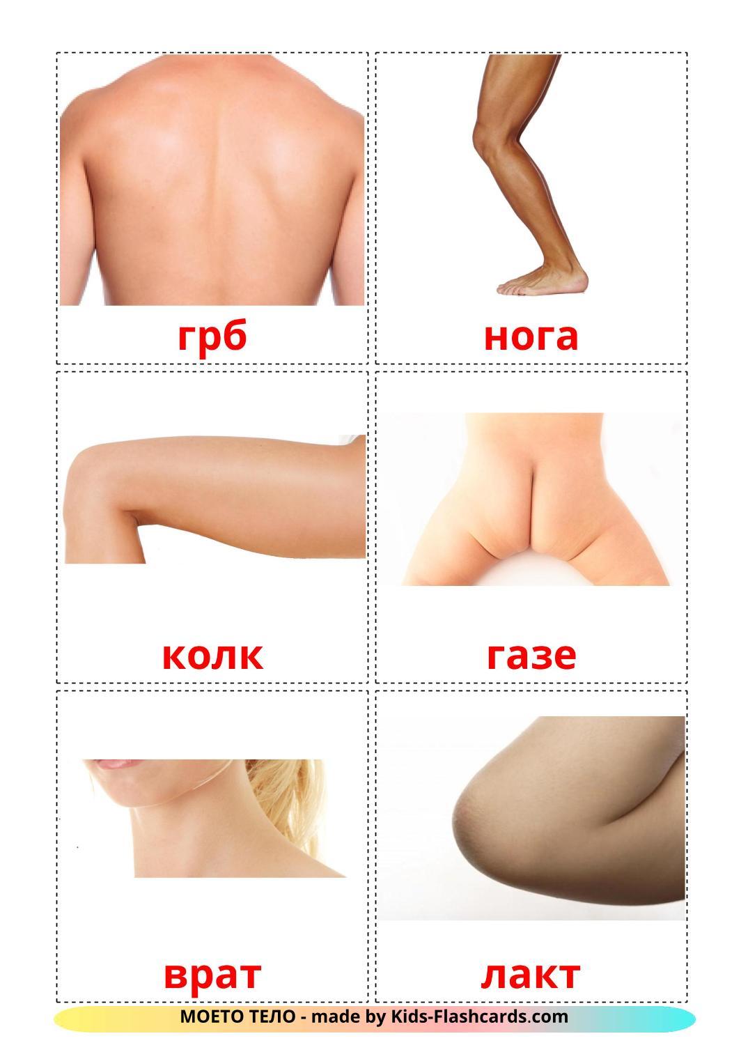 Body Parts - 26 Free Printable macedonian Flashcards