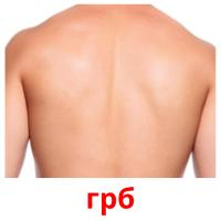 грб picture flashcards