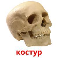 костур picture flashcards
