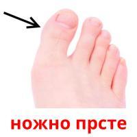 ножно прсте picture flashcards