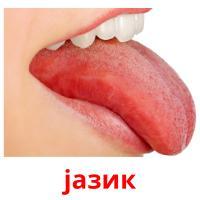 јазик picture flashcards