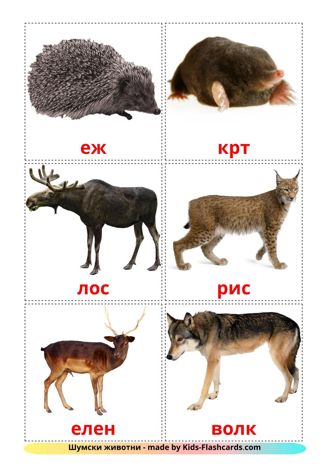 Forest animals - 22 Free Printable macedonian Flashcards