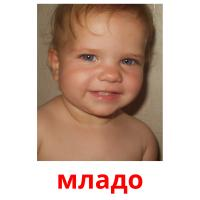 младо picture flashcards