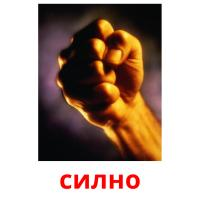силно picture flashcards