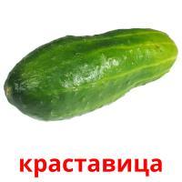 краставица picture flashcards
