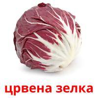 црвена зелка picture flashcards